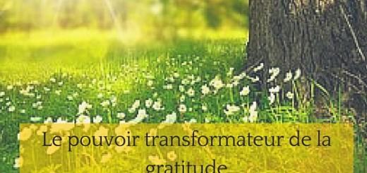 le pouvoir de la gratitude